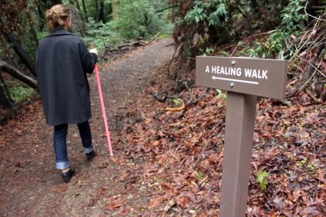 healingwalk1-940x626